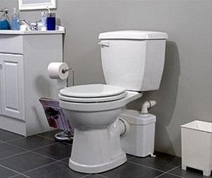 Macerating Flush
