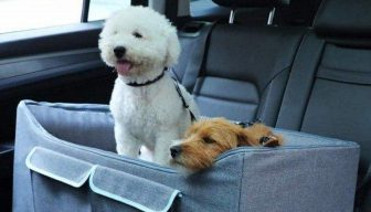 Best Dog Car Seat