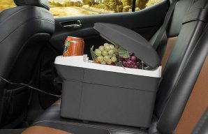 Best Car Refrigerator